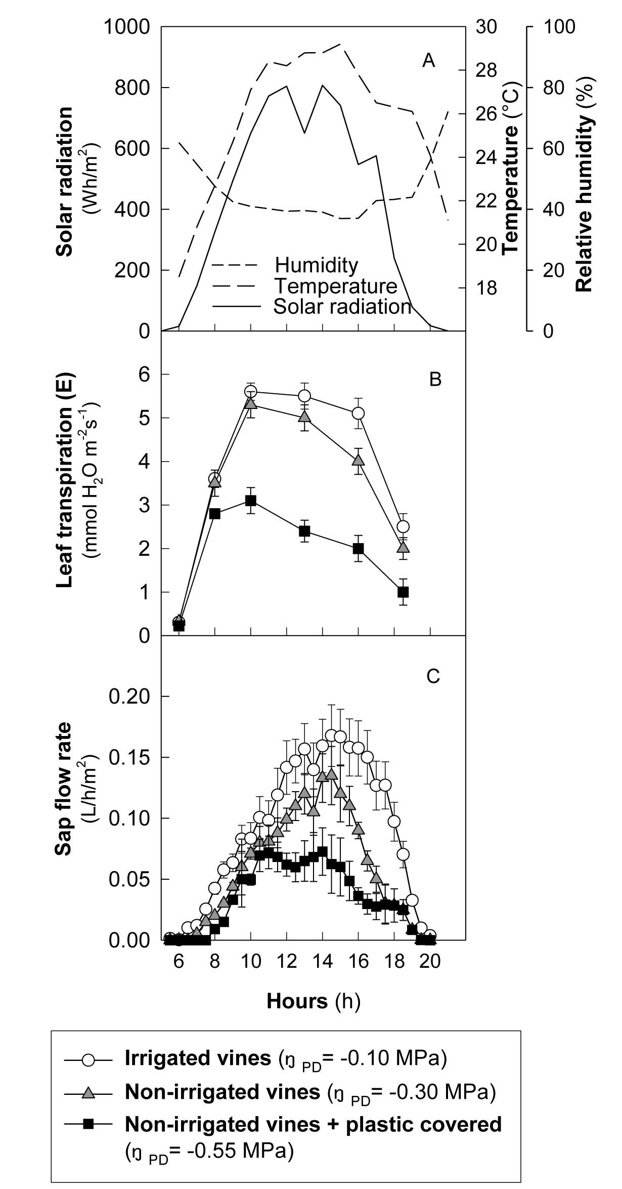 Recent trends in the intrinsic water-use efficiency of ringless rainforest trees in Borneo
